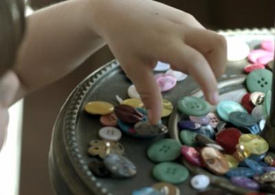 BCR Buttons